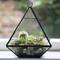 Glass pyramid terrarium | standing decorations | sass & belle