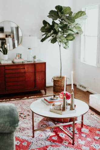 home accessory home decor furniture home furniture table coffee table plants anthropologie