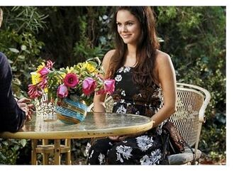 rachel bilson hart of dixie floral dress dress
