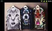 sweater,cats,dog,tiger