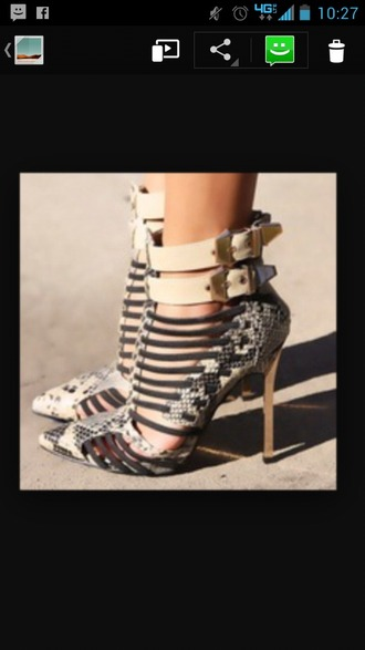 shoes snake print heel