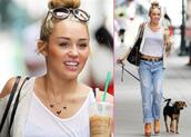 bag,miley cyrus,sunglasses,jeans,sweater