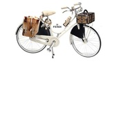 home accessory,bike,cruiser