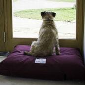home accessory,waterproof dog mattress,dog mattress