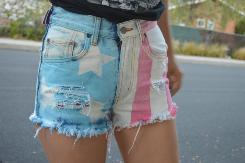 The 'american flag' shorts