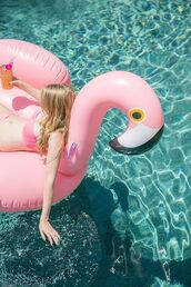 home accessory,flamingo,pool accessory