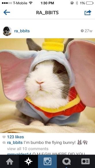 bunny costume pet animal clothing