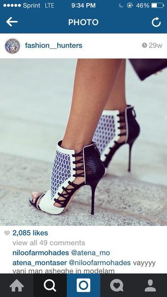 shoes shoes white blue black lace leather snakeskin casado help socks blouse jewels jacket sweater black white blue high heels cute high heels black heels style trendy heels pumps