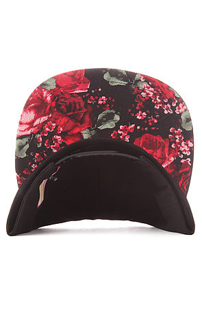 Beauty Forever Snapback Killin It -  Karmaloop.com