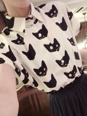 blouse cats