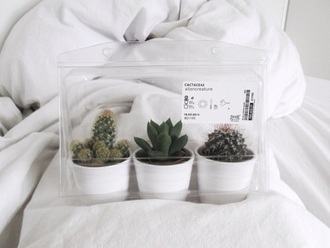 cactus wanting home decor alien creature home accessory plants cute pretty aesthetic grunge love white tumblr