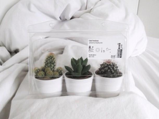 Cactus Wanting Home Decor Alien Creature Home Decor Home Accessory Plants Cute Pretty Aesthetic Grunge Love