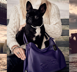 love maegan blogger coach purple leather bag