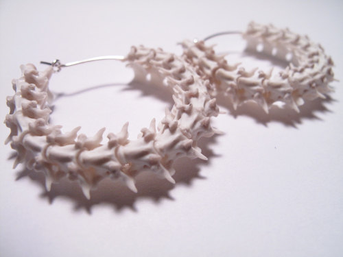 Snake vertebrae animal bone earrings snake earrings vertebrae jewelry real animal bone hoop earrings