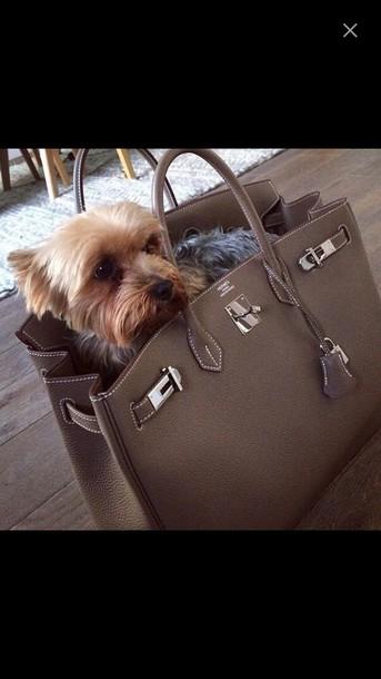 bag hermes birkin bag dog