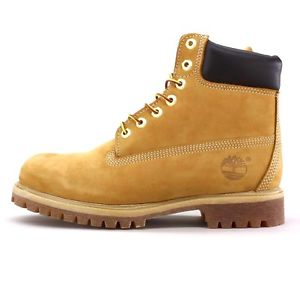 New in Box Men's Timberland 6 inch Wheat Nubuck Yelloww Leather 10061 18094 | eBay