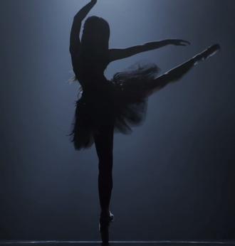 dontbegonetoolong ballet elegant gorgeous ariana grande tulle skirt