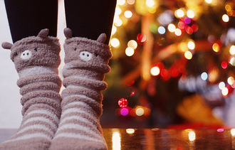 shoes bear socks teddy bear fluffy cozy animal pink cute pig