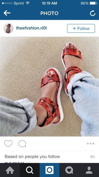 shoes snake print cute sandals red shoes