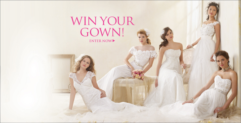 Designer Wedding Dresses and Bridal Gowns from Alfred Angelo