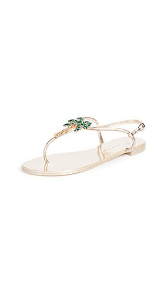 Giuseppe Zanotti tree palm tree sandals shoes