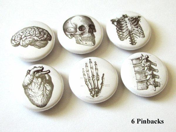Anatomy 1 inch pinbacks pin badges hand brain skull anatomical heart anatomy human body bones skeleton geekery stocking stuffer flair fridge