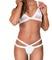 The barr bikini by féroce