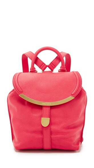 indian backpack pink bag