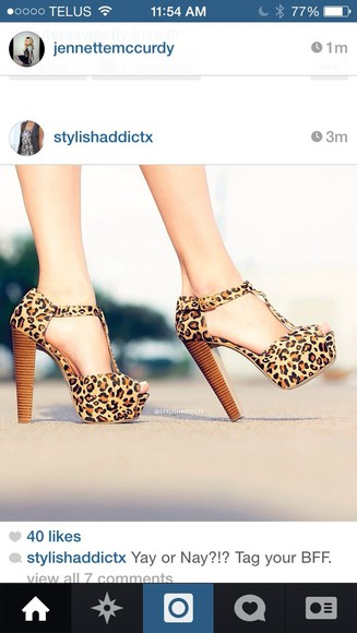 shoes leopard print cute fashion high heels chunky chunky heels gorgeous leopard print shoes fashionista cute high heels