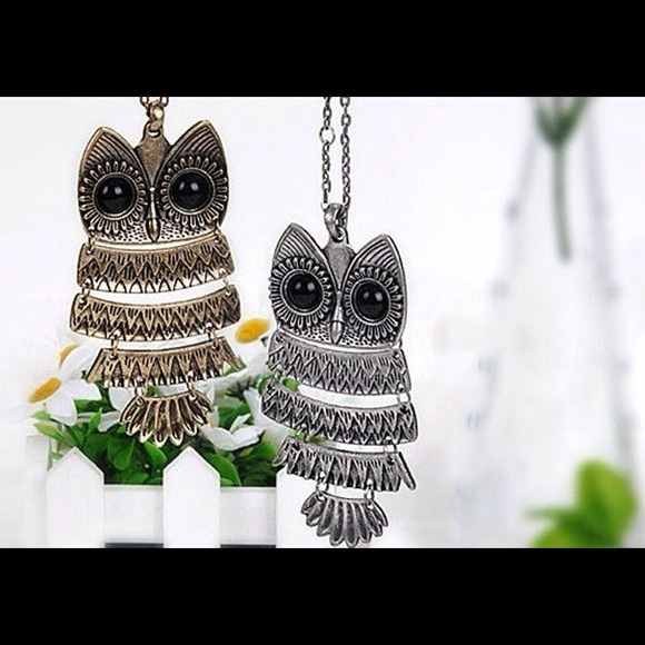 47% off Jewelry - Bronze and Silver Owl Pendant Necklace from