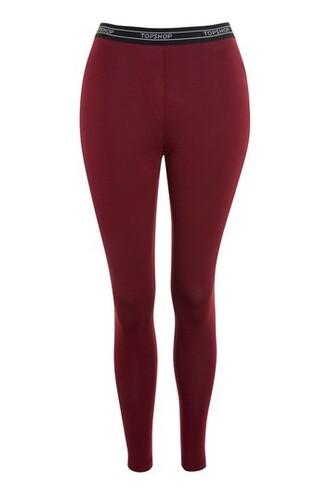 leggings burgundy pants