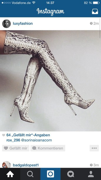shoes leather snake fashion
