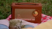 home accessory,philco,radio,vintage,american horror story,freak show,brown,bag,hipster