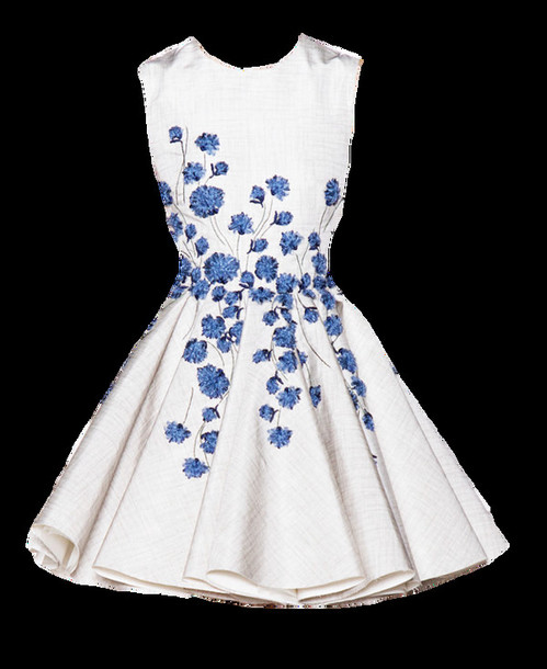 f154c6c49092 dress cute pretty flowers white skater dress blue
