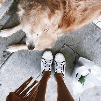 sneakers adidas black white stripes trendy sports shoes converse bag jacket