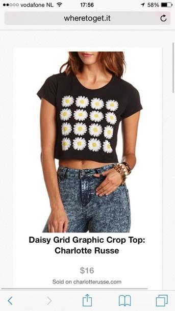 top daisy grid