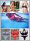 Aliexpress.com : buy free shipping hot sale triangle 2014 push up bikinis set neon neoprene swimsuit vintage halter swimwear bandage vintage bikini from reliable swimsuit bikini suppliers on dora sweet shop