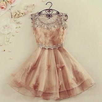 butterfly beige girly chiffon pink dress chiffon dress dress