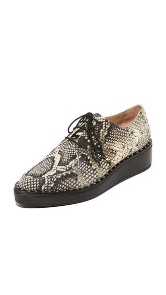 python oxfords shoes