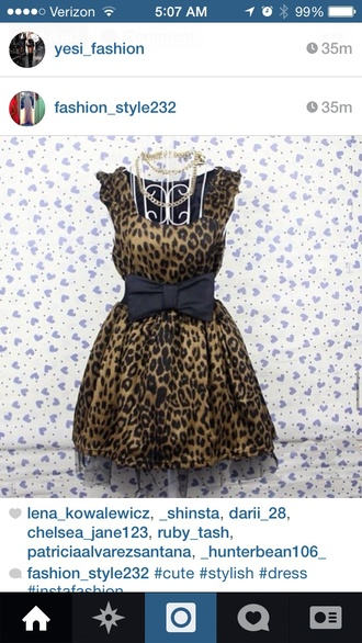 dress animal print dress brown dress