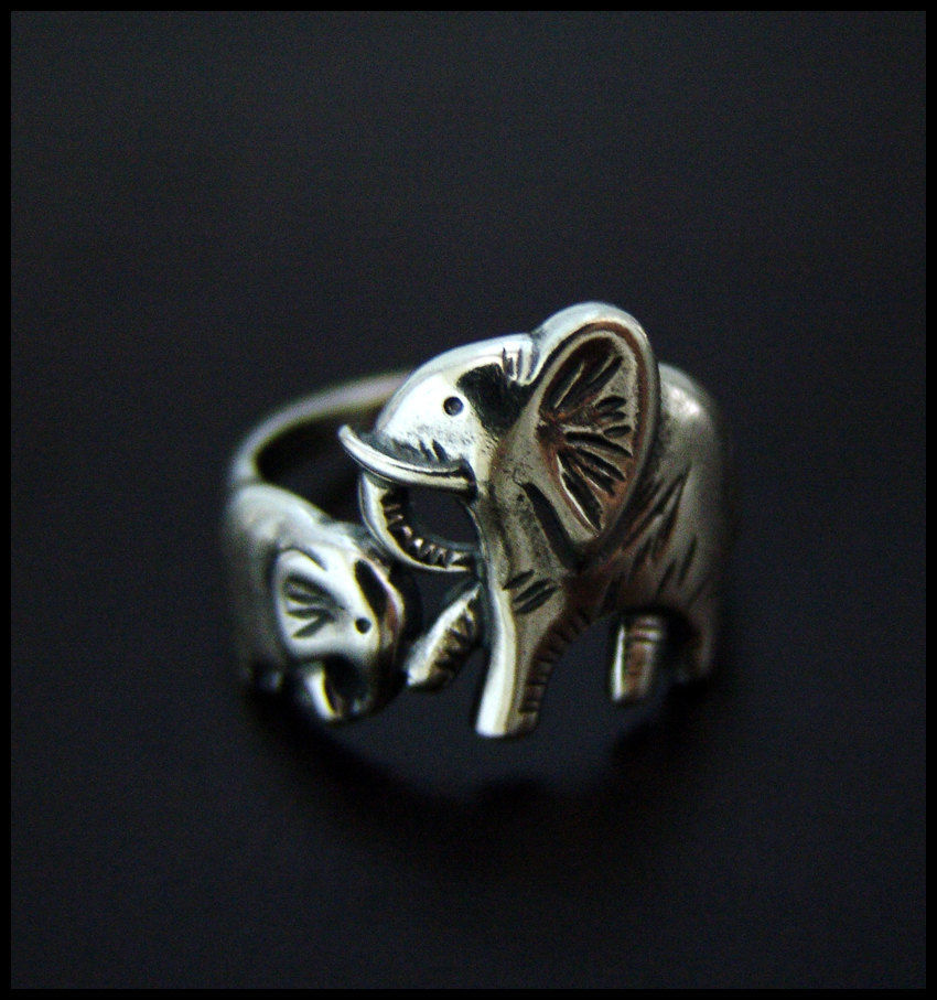 Baby and mama elephants ring
