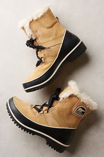 shoes sorel boots