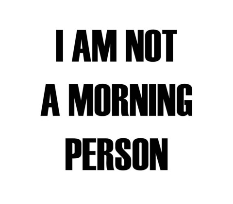 I Am Not A Morning Person T Shirt | Cheap Funny T Shirts ~  Pop Culture T Shirts ~ Baby Onesies ~ Xray Skeleton Baby Tops ~ Funny Maternity Tops