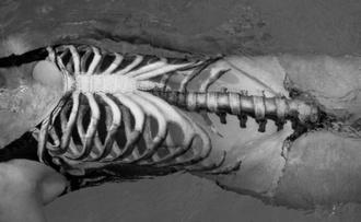 swimwear black grunge bones skeleton