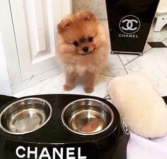 home accessory dog bowl channel bowl pet bowl channel pet bowl