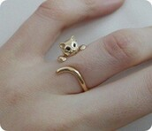 gold ring,cat ring,wrap cat,bag,jewels,ring,jewerly,cats,animal,gold,jewelry,cute,catring,kitten ring,sweet,cat eye,knuckle ring