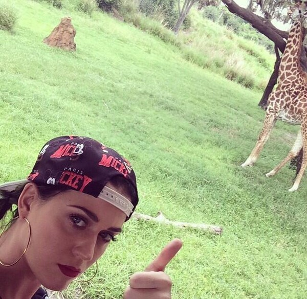 katy perry hat
