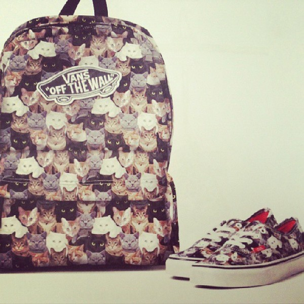 shoes vans bag cat print