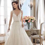dress,delicate dress