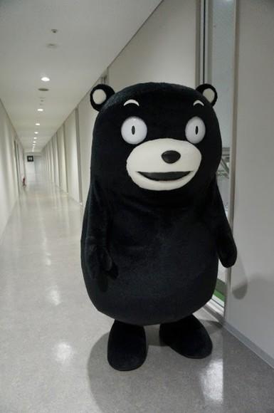 funny pajamas black bear ridiculous halloween costume monster
